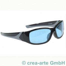 Schutzbrille Didymium silber-schwarz_1074